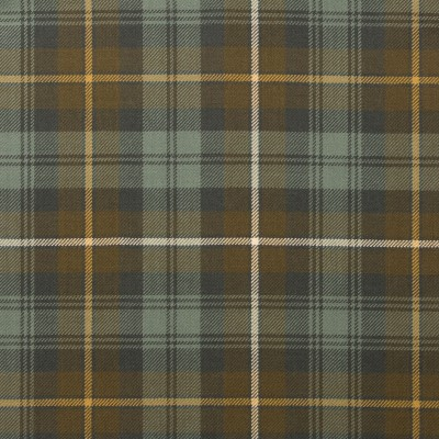 Campbell of Argyll Weathered Reiver Tartan