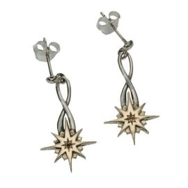 Compass Post Dangle Earrings SS 10kt Gold PEX7019